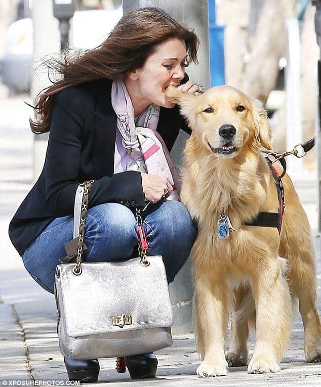 lisa vanderpump golden retriever rumpy