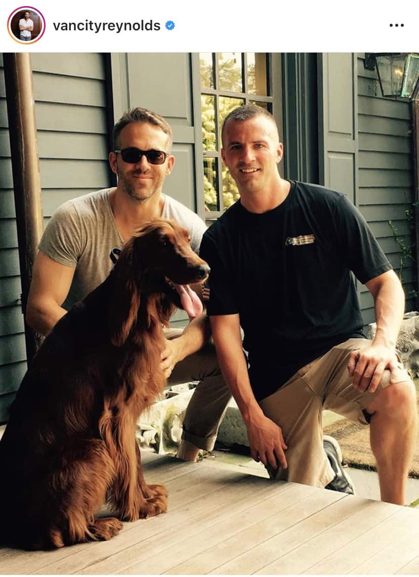 ryan reynolds golden retriever billie