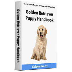 golden retriever puppy handbook