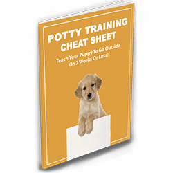 potty training cheat sheet box