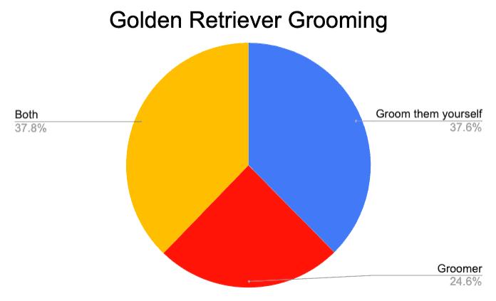 golden retriever grooming