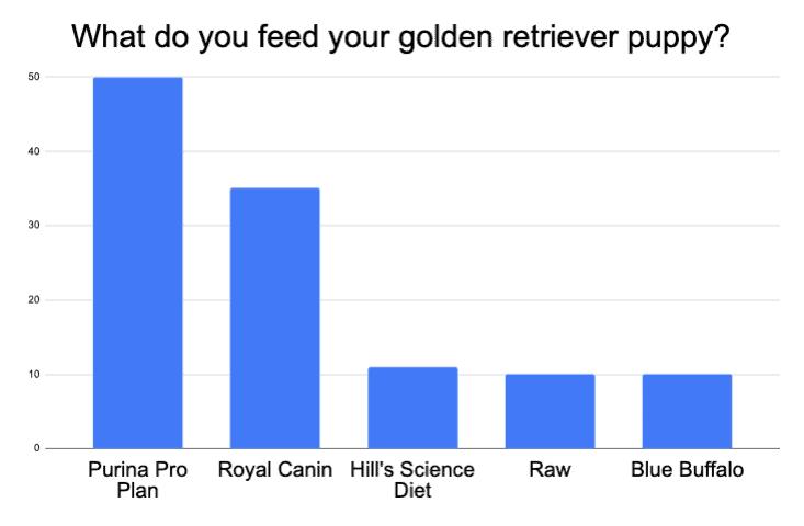 golden retriever puppy food