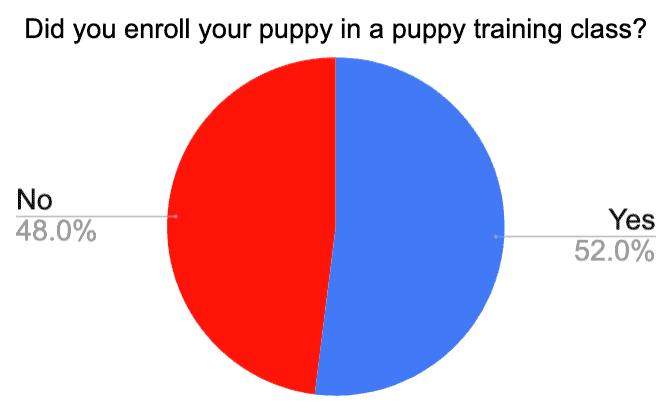 puppy training class for golden retriever puppy