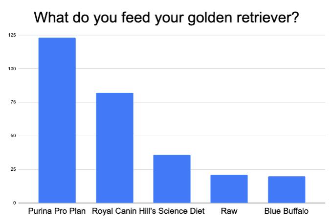 most popular golden retriever puppy food
